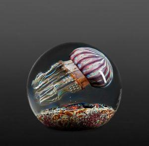 Satava-Purple-Ribbed-Jellyfish-Side-Swimmer